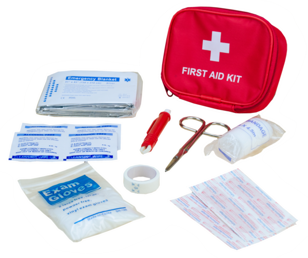 Pawise First Aid Kit